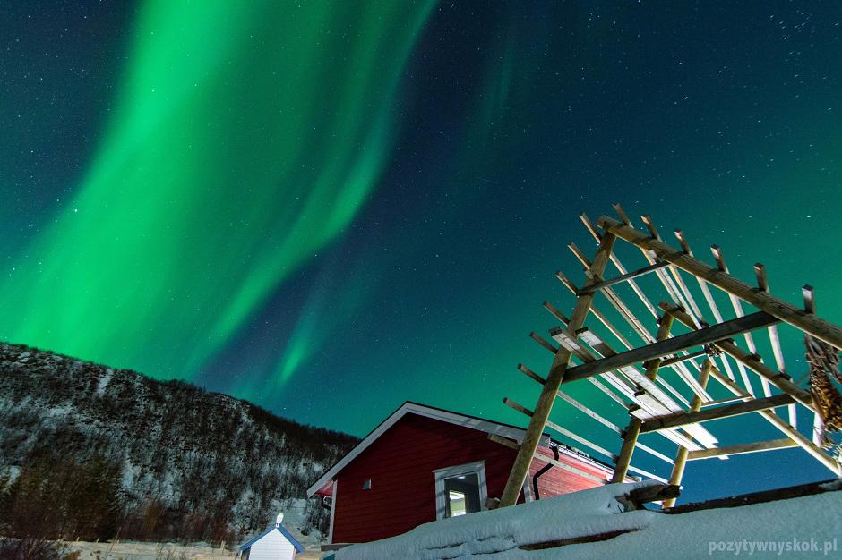 Zorza polarna w Tromso