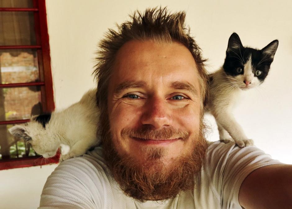 Podróżnik Strzeżysz z kotami