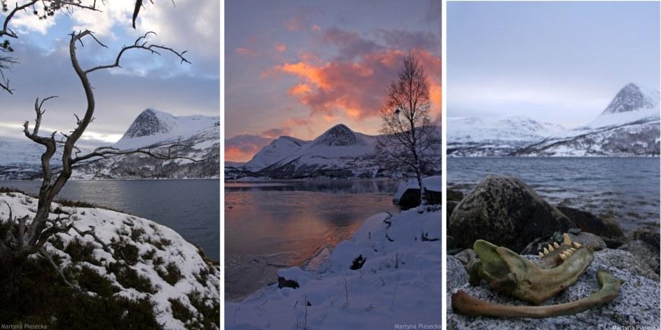 Norwegia, krajobrazy Mørsvikbotn