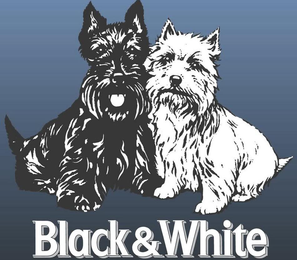Black and White un whisky muy perruno  Perricatessen
