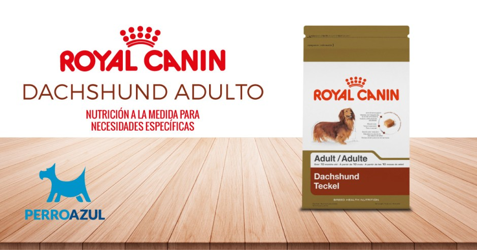Royal Canin Dachshund Adulto