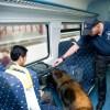 """alt=""""perro detector de drogas en tren"""""""
