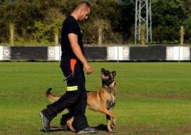 """alt=""""Campeonato del Mundo Rescate Canino"""""""