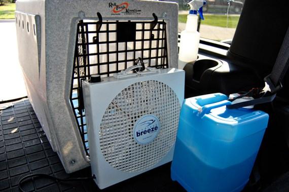 inmunes al golpe de calor