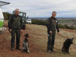 Patrulla canina contra cebos envenenados