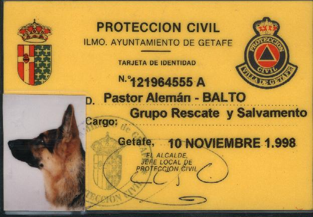 perro de salvamento