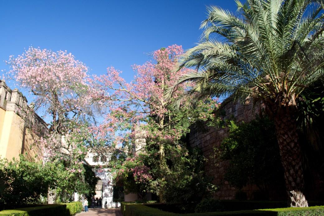 Jardines del Alcázar de Sevilla, España