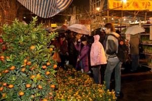Naranjas y mandarinas en un mercado de flores de año nuevo chino, Hong Kong