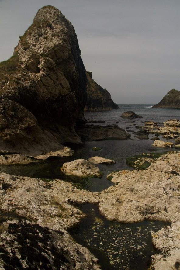 Rocas marinas en la Costa de la Calzada, Irlanda del Norte