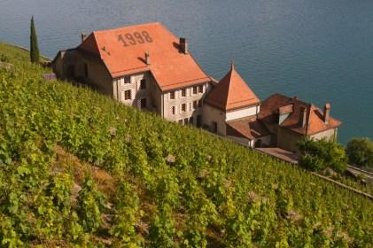 Viñedos y lago Léman, Chexbres, Suiza