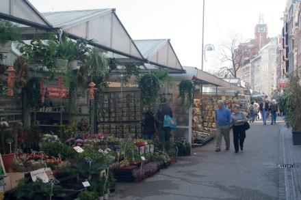 Bloemenmarkt o mercado de flores, Ámsterdam, Países Bajos