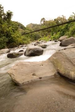 Domingo 2: Un río que atraviesa uno de estos bosques, junto con un puente de cuerdas en Volcán, Panamá.