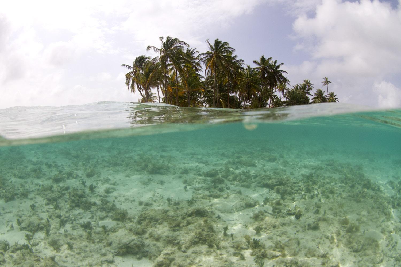 Restos de coral en la playa de la isla Perro Grande, Guna Yala o San Blas, Panamá