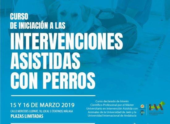 Curso Iniciación a la Intervención Asistida con Perros Málaga