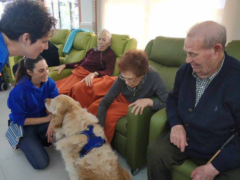 Terapia Asistida con Perros - Nuestra Señora de los Desamparados Torredonjimeno