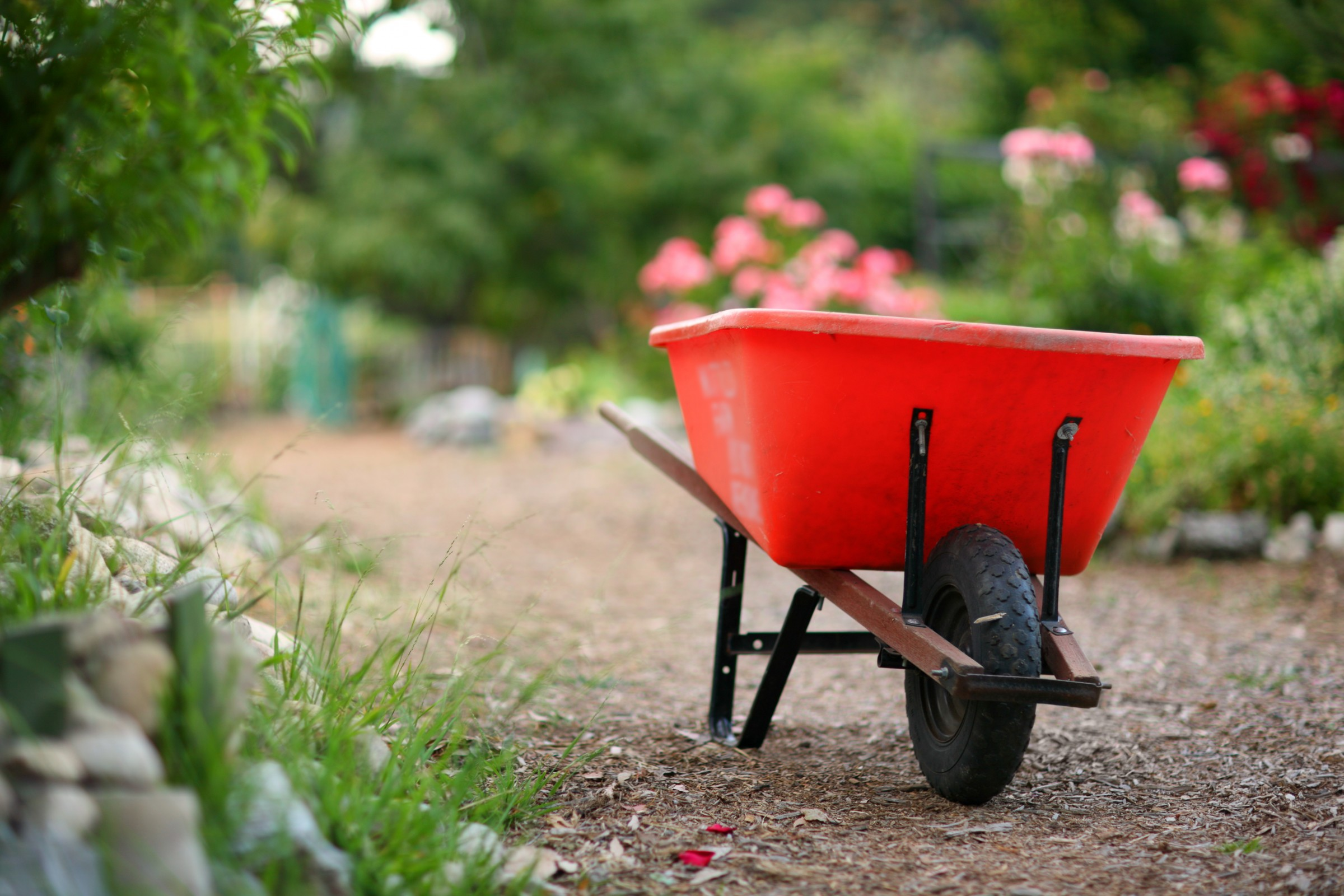 7 Tips To Spring Cleaning Your Yard