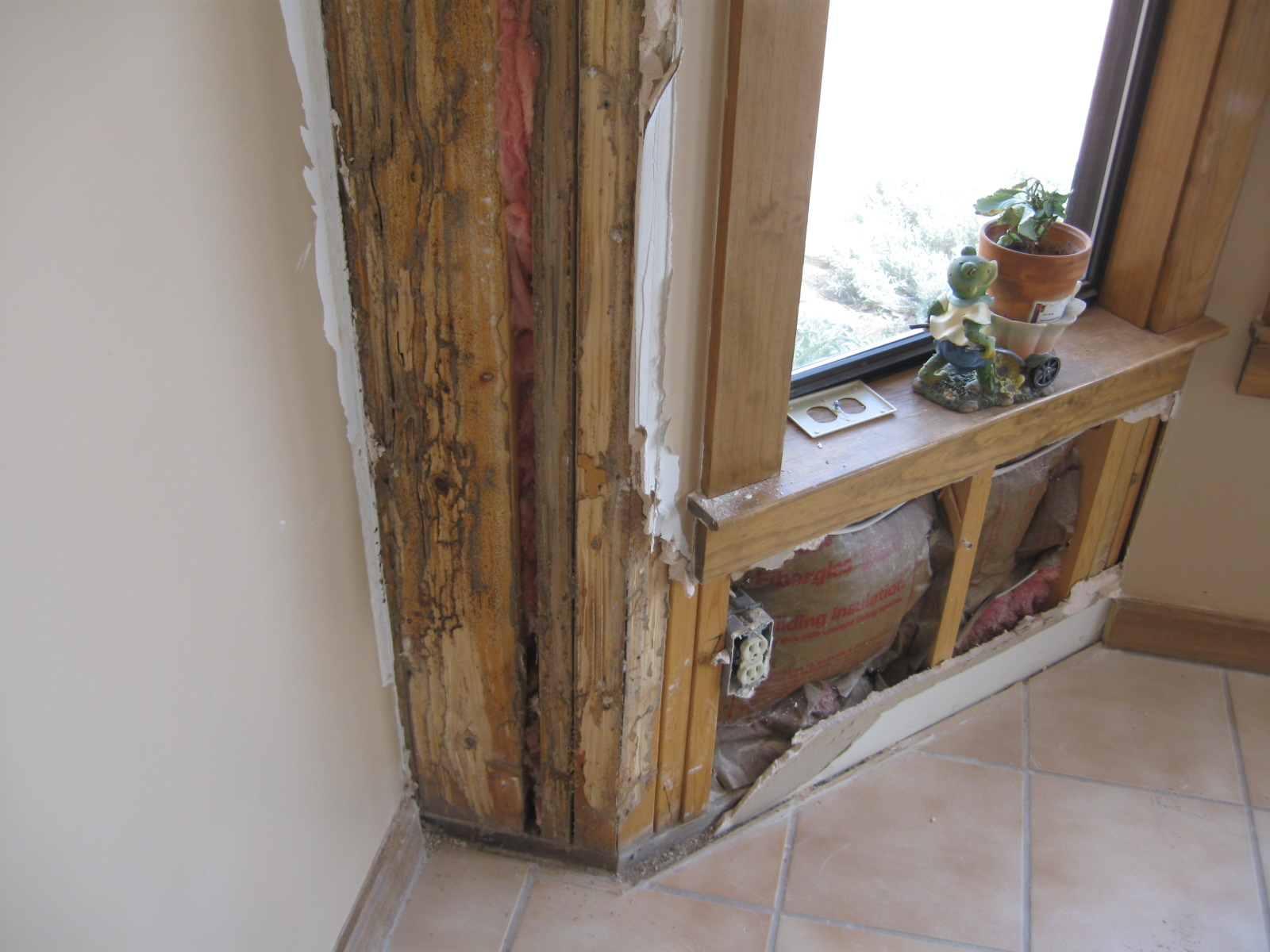 termites treatment repair Albuquerque Rio Rancho