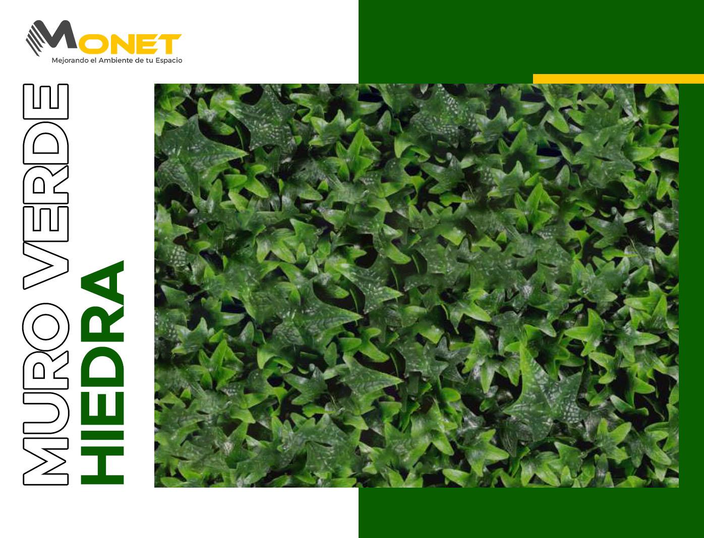 Muro Verde Hiedra distribuidores mexico