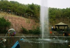chitgar-forest-park-6