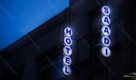 saadi-hotel-tehran-view-2