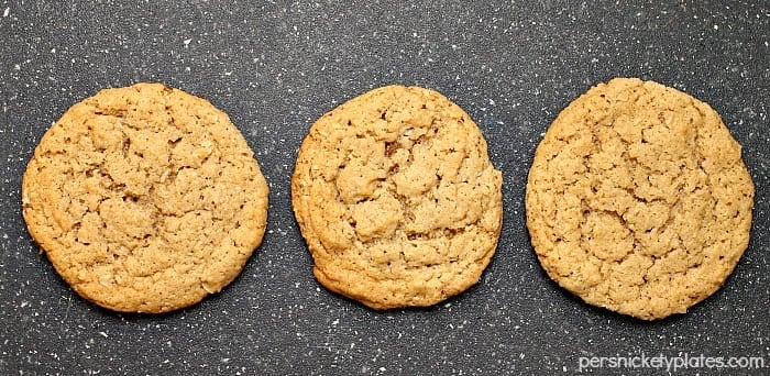 Old Fashioned Plain Oatmeal Cookies   Persnickety Plates