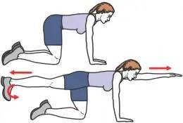 renforcer le dos