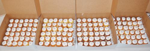 Cupcakes - CC310