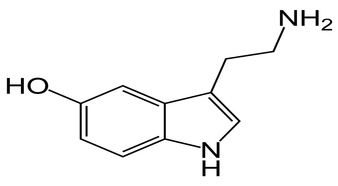 Serotonina: cos'è l'ormone della felicità