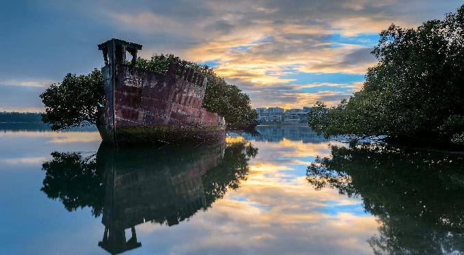 Da nave abbandonata a spettacolo della natura – La SS Ayrfield