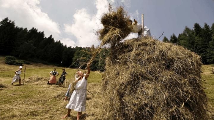 """Domenica 4 agosto appuntamento sui prati dello Zoncolan con """"Fasjn la mede"""""""