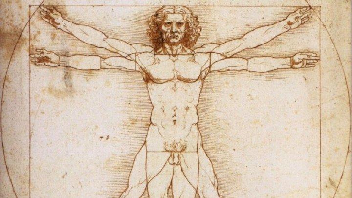L'Uomo Vitruviano in viaggio verso il Museo Louvre di Parigi