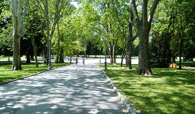 I giardini più belli: Giardino Ducale di Parma