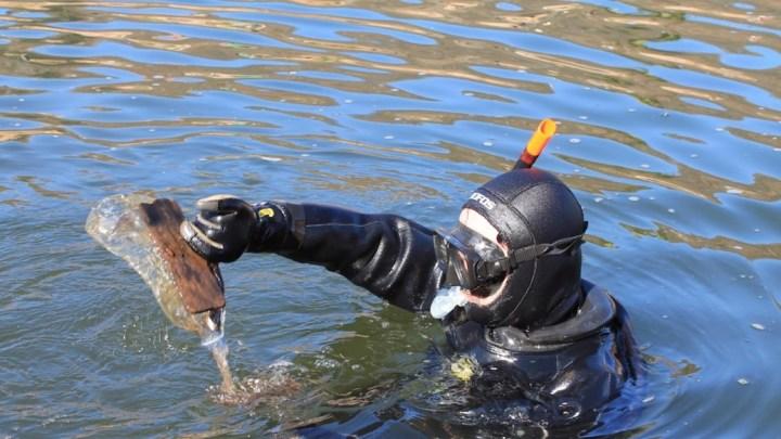 A Porto Ceresio la pulizia del lago con GODiving e Sea Shepherd