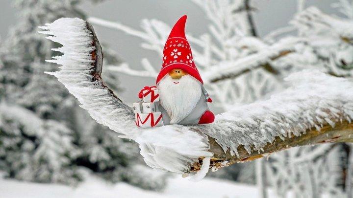"""A Novara arrivano le """"Scatole di Natale"""": un regalo simpatico e inatteso per i più bisognosi"""