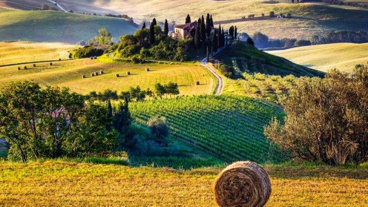 """Fare """"Rete"""" in modo serio premia sempre. La Toscana pronta a ripartire"""