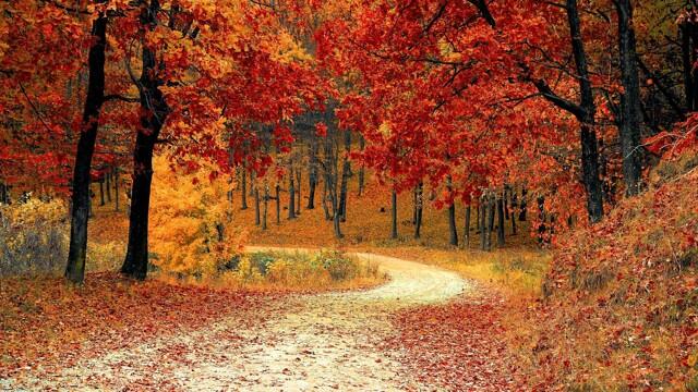 L'equinozio d'autunno, ponte tra due stagioni