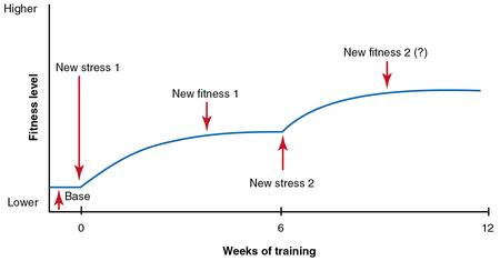 Gli 8 principi dell'allenamento