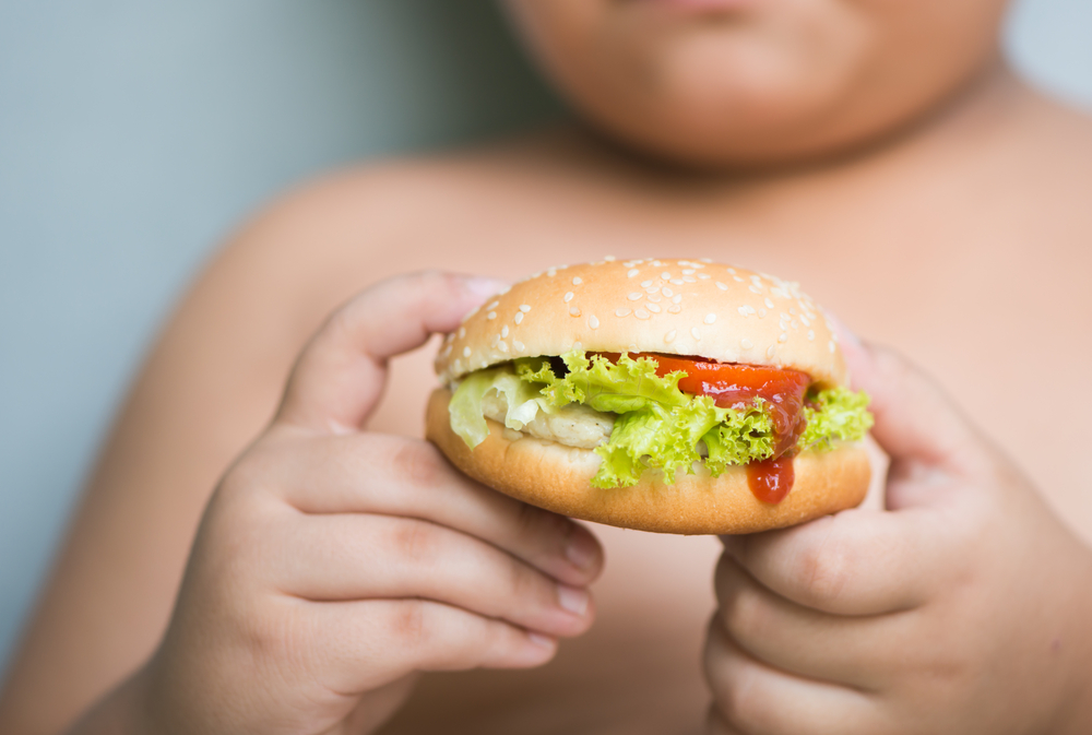 An obese child eats junk food.