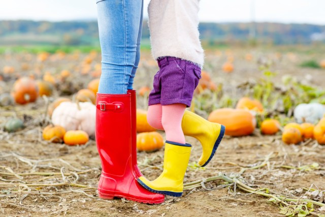 Colorful rubber boots make people so happy, like Personal Trainer Food!