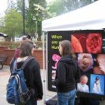 Pillars of Personhood ProLife Display