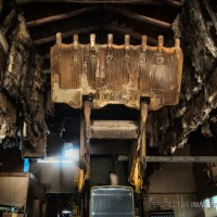 Rise of the Machines - A bulldozer in forgotten storage, waiting for that day...