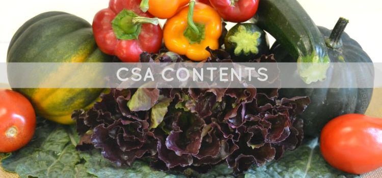 CSA Box Contents (#8)