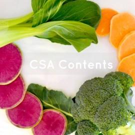 CSA Box