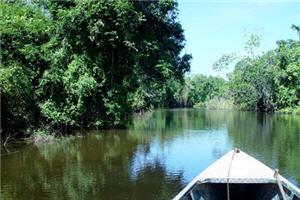 Contamana es la perla de la selva en Ucayali