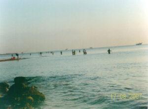 foce fiume tordino pesca alla leccia