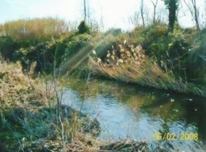 sponde fiume tordino
