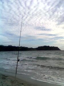 pesca a surfcasting