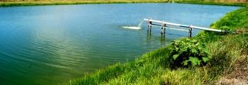 Caracterização da piscicultura