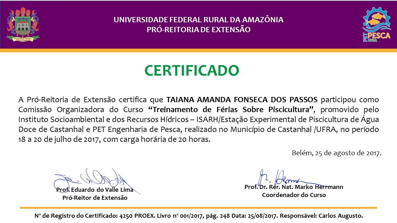 Certificados – Treinamento de Férias