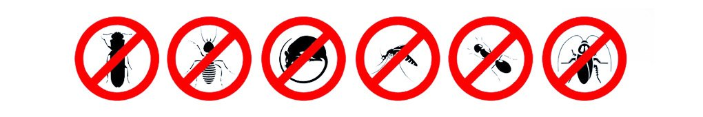 pest control prices swindon and wiltshire